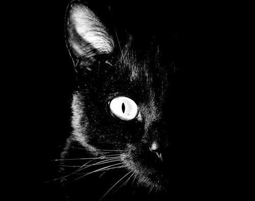 черная магия как привлечь удачу
